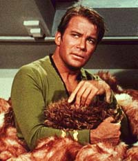 kirk and tribbles Star Trek: To Boldy Go Where No One Has Gone Before